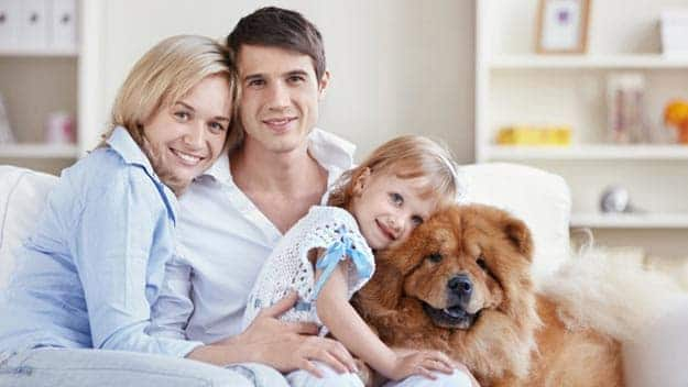 Wills & Trusts dog-young-family Direct Wills Woburn
